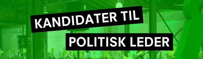 ny%20politisk%20leder